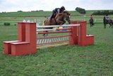 Oben springen pony